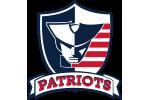Veterans Patriots Logo