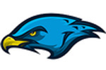 Kirby Falcons Logo