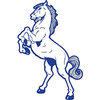 Metzger Mustangs Logo