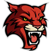 Woodlake Hills Wildcats Logo